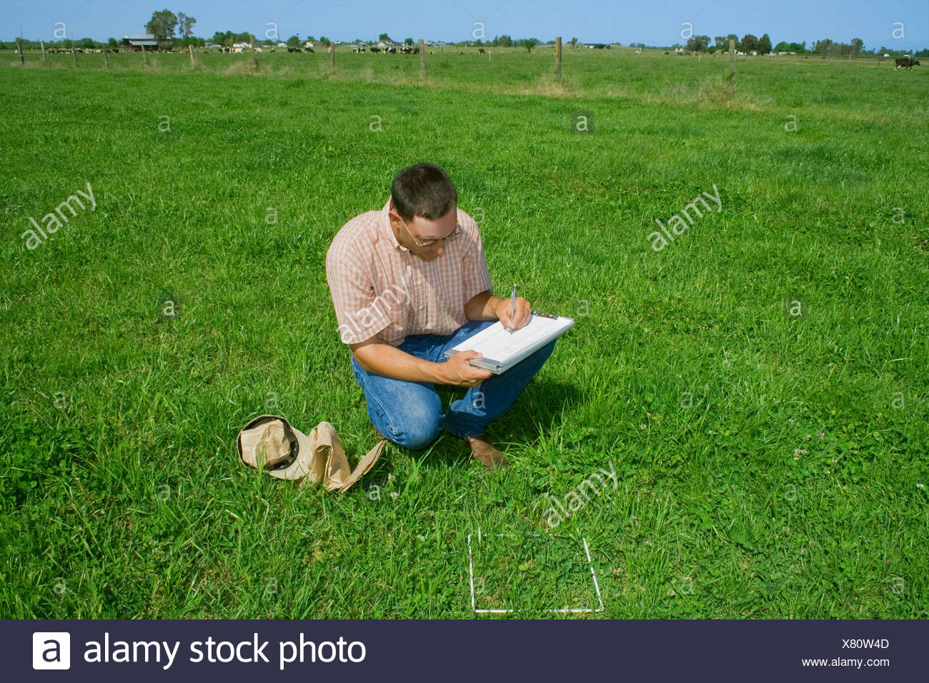 how to take pasture herbage sample