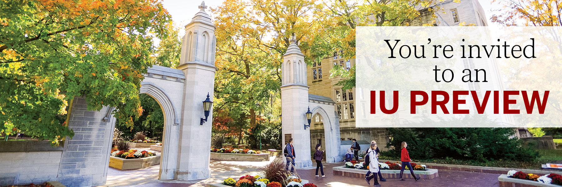 indiana university application transfer