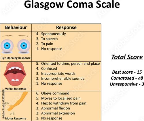 gcs score pdf