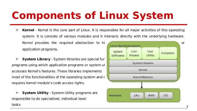 functions of special libraries pdf
